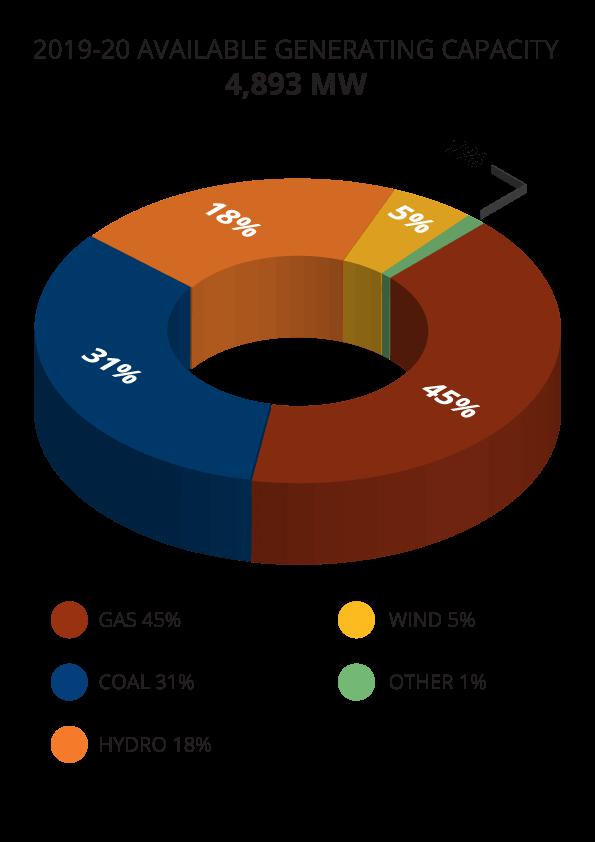 Pie-chart-2